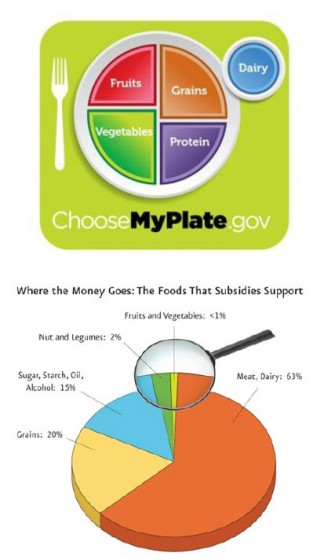 Usda Announces My Plate Will Subsidies Follow Suit At Nutrition